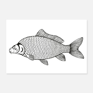 Stencil Shed carp poster - 30x20 cm Poster