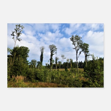 Landscape Forest landscape with clouds - 30x20 cm Poster