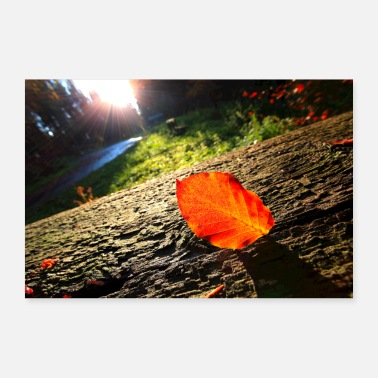 Leaf autumn leaf - 30x20 cm Poster
