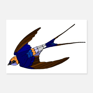 Flight Swallow - 30x20 cm Poster