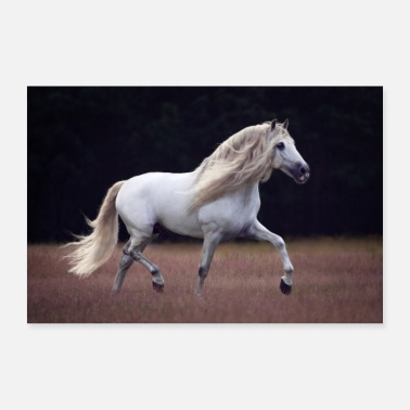 Trot Horse with long mane trotting on pasture (PRE) - Poster