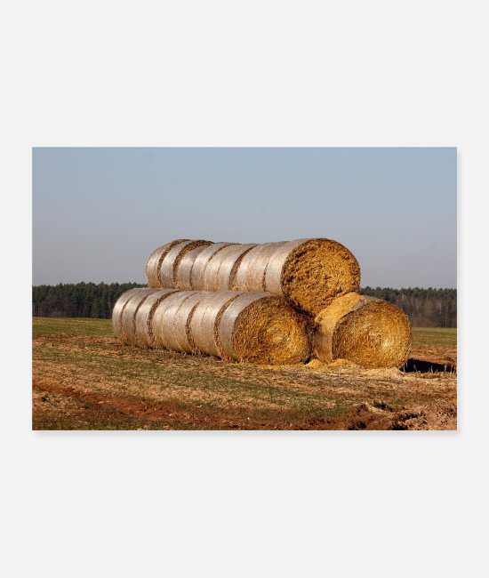 Hay Posters - straw bales - Posters white