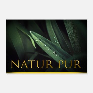 Photoshop Pure nature leaf - Poster