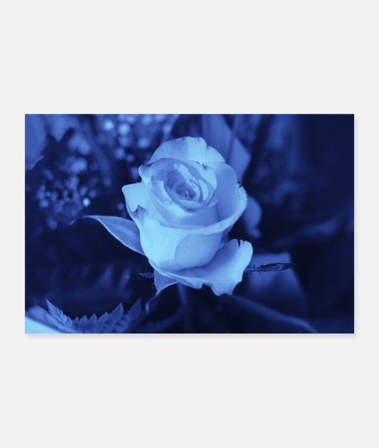 Blue White Posters - Rose blue - Posters white