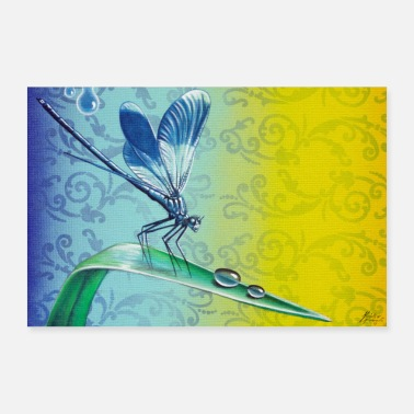 Band Banded demoiselle - Poster
