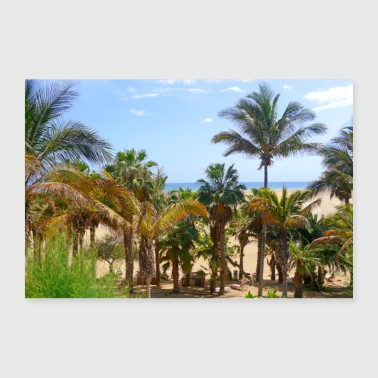Palm Trees Palm trees in Fuerteventura - Poster 24 x 16 (60x40 cm)
