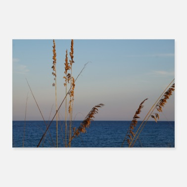 Vacation Reeds and sea - Poster 24 x 16 (60x40 cm)