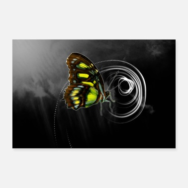 Naturellement Spirale de papillon naturel - Poster 60 x 40 cm