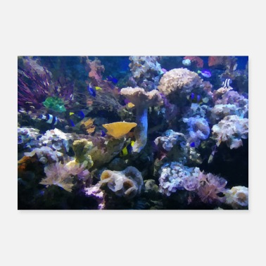 Under Water Indonesia under water - Poster 24 x 16 (60x40 cm)