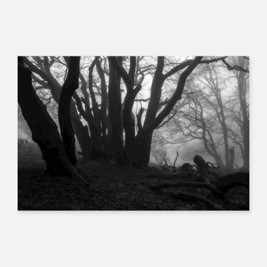 Forest 8 - Poster 24 x 16 (60x40 cm)