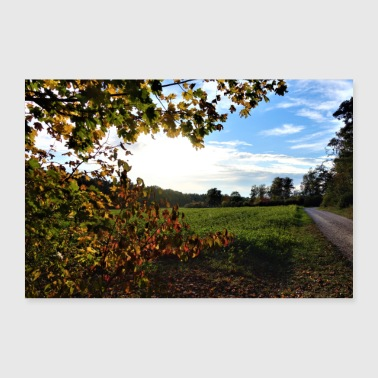 Weather Forest road, blue sky, autumn weather - Poster 24 x 16 (60x40 cm)