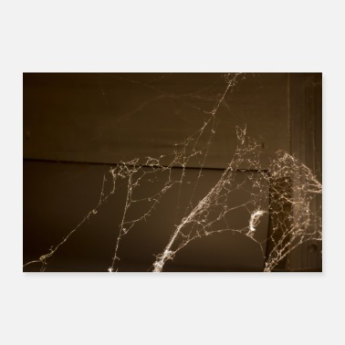 Web Spider web - Poster