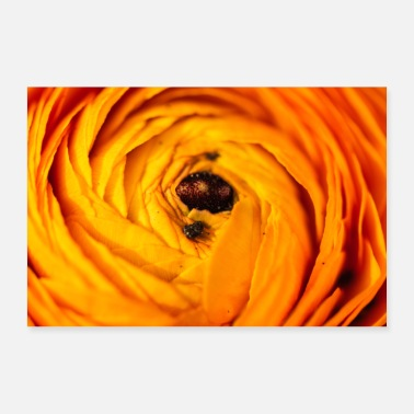 Orange Tourbillon de fleurs - Poster