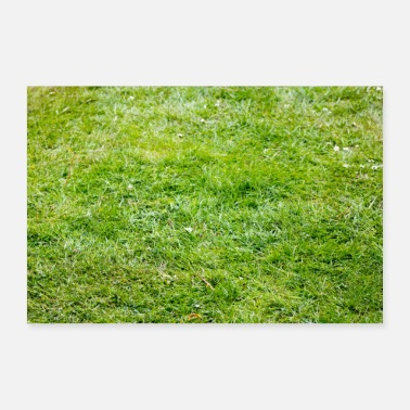 Lawn Mower Green lawn in the garden on the field, place, park - Poster