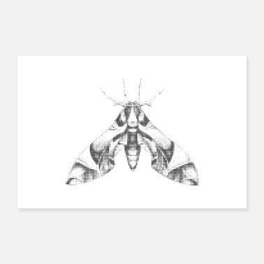 Insect Moth Insect Gift kunst aan de muur Halftone raster - Poster