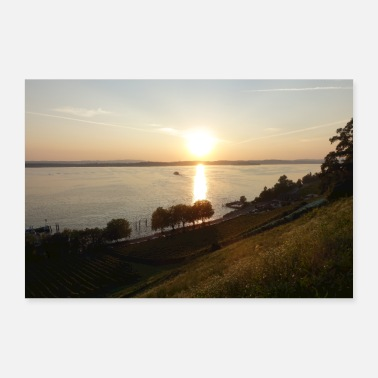 Lake Constance with sunset and meadow - Poster