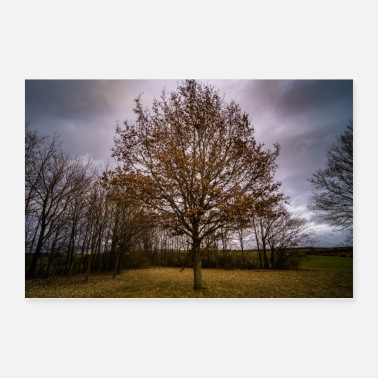 Winter Baum im Winter - Poster 60x40 cm