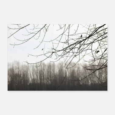 Branche branches - Poster