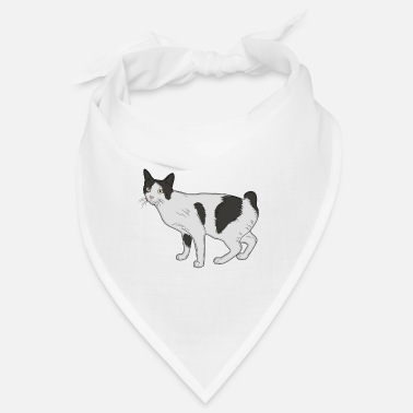 Domestic Cat Cat domestic cat classic - Bandana