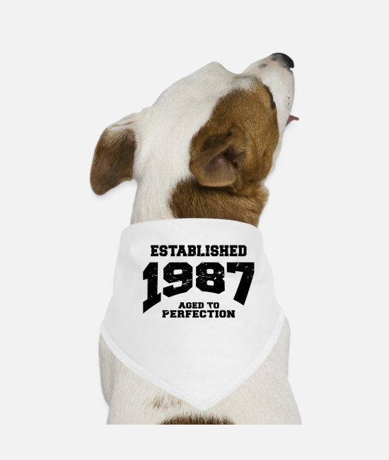 1987 Bandanas - Established 1987 - Dog Bandana white