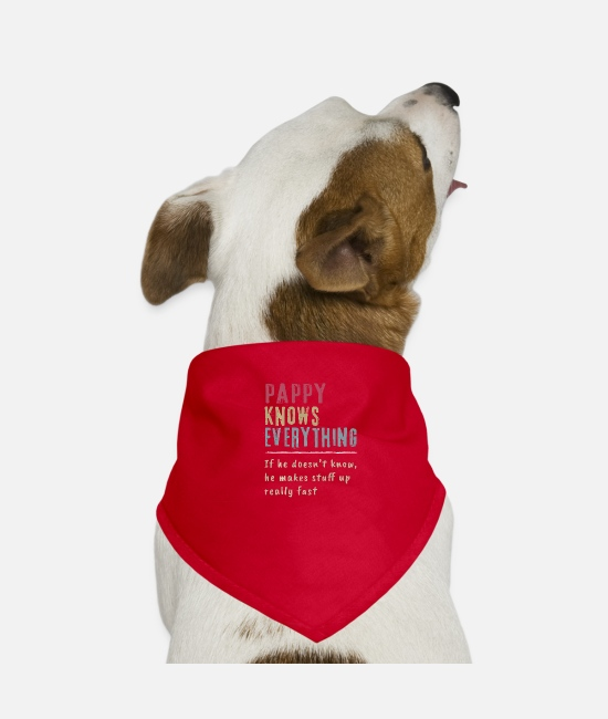 Father's Day Bandanas - Pappy Know Everything Grandpa Gift - Dog Bandana red