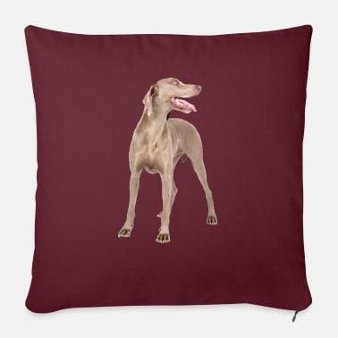 Dog - Sofa pillow with filling 45cm x 45cm