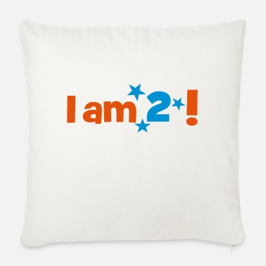 2 2 - Sofa pillow with filling 45cm x 45cm
