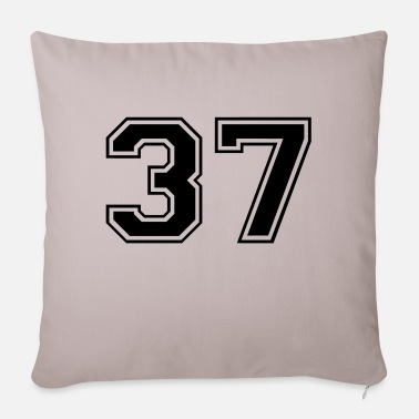 37 37 - Sofa pillow with filling 45cm x 45cm
