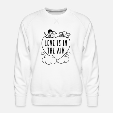 Valentinstag - love is in the air 1c - Männer Premium Pullover