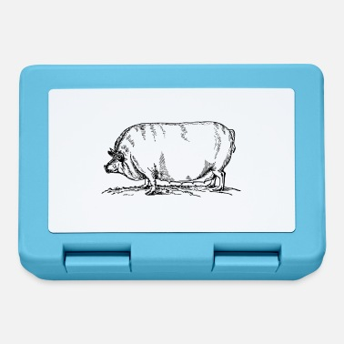 Sow sow - Lunchbox
