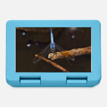 Garden A Blue Dragonfly On An Exposed Root - Lunchbox