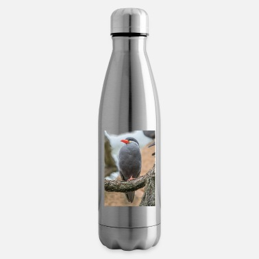 Inca Inca tern Inca tern Inca tern - Insulated Water Bottle