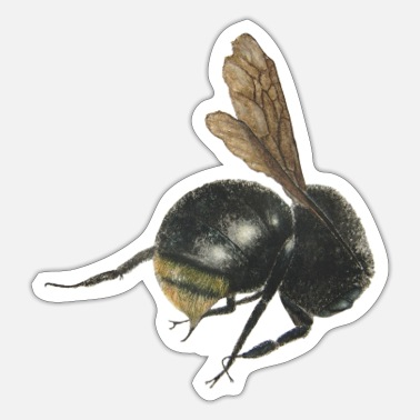 Bumble Bee bumble bee - Sticker