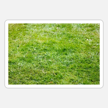 Green lawn in the garden on the field, place, park - Sticker