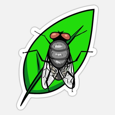 Pest Fly insect pest - Sticker