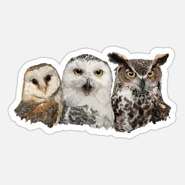 Owl Owls and owl - Sticker