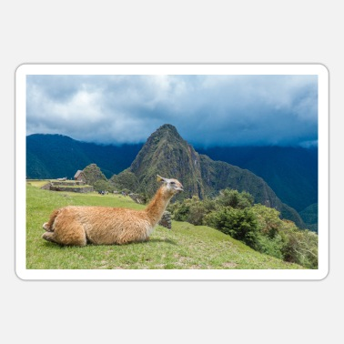Cusco Llama in front of Inca ruins Machu Picchu Peru - Sticker