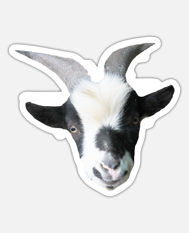 Draw Stickers - Robin the billy goat - Sticker white matte