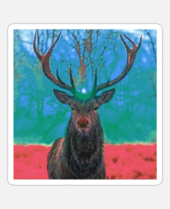 Stag Stickers - Sunrise in the antlers of the Stag - Sticker white mat