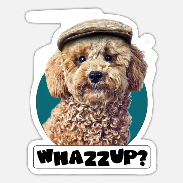 Picture Pudel Pepe whazzup - Sticker