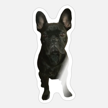 French French bulldog French - Sticker