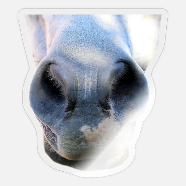 Nostrils Horse nostrils pony nose animal donkey nostrils mouth - Sticker