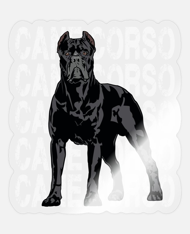 Drawing Stickers - Cane Corso Molosser Mastiff Italian - Sticker transparent glossy