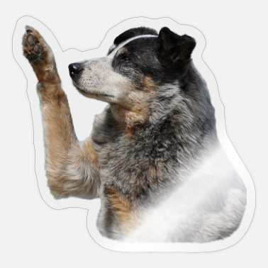 Hundisch Australian Cattle Dog Fotomotiv - Sticker