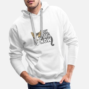 Look at me now, Cat - Men's Premium Hoodie