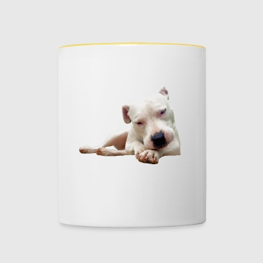 PIT BULL DOGS PET GIFTS - Contrasting Mug