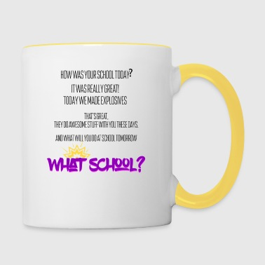 How was your school today? - Contrasting Mug