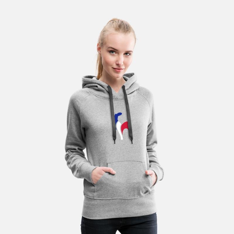 Coq Sweat-shirts - Coq france - Sweat à capuche premium Femme gris chiné