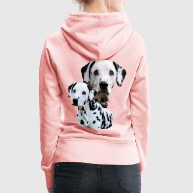 Dog, dog head, dog sports, Dalmatian, dog , - Women's Premium Hoodie