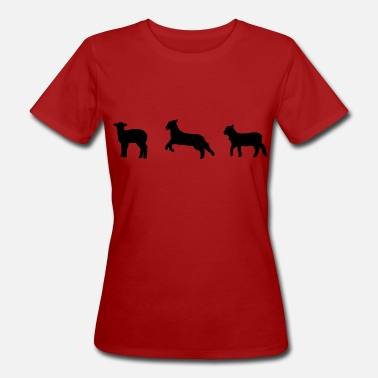 Mouton Agneau sheep, lamb, moutons, agneau - T-shirt bio Femme